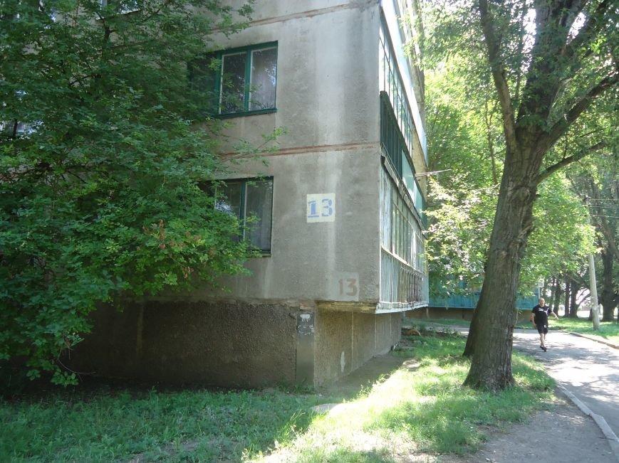 Красноармейские микрорайоны «Шахтерский» и «Южный» избавятся от блох (фото) - фото 3