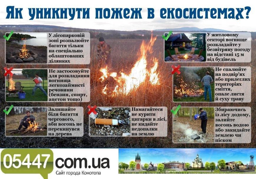 Правила безпеки під час відпочинку в лісі та біля водойм (фото) - фото 2