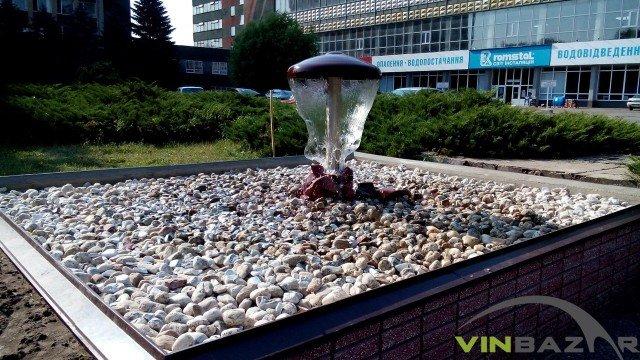 У Вінниці відкрили новий фонтан (Фото+Відео) (фото) - фото 3