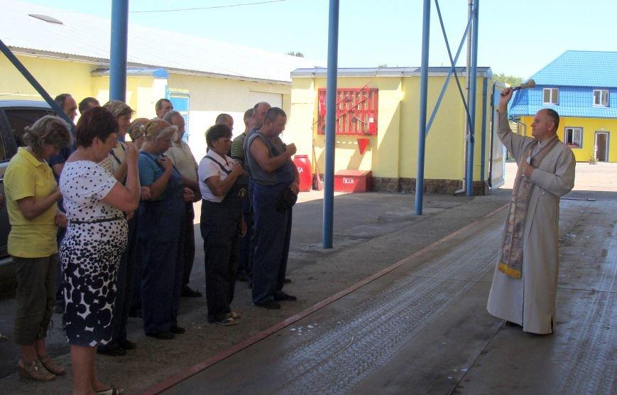 На Тернопільщині «Бучачагрохлібпром» розпочав жнива (фото) (фото) - фото 1