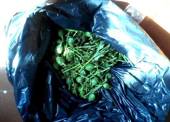 У Лубнах торгівлею наркотиків займалася подружня пара. Фото (фото) - фото 1