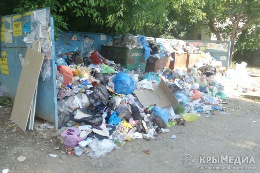 На симферопольском Москольце пять дней не вывозят мусор (ФОТОФАКТ) (фото) - фото 1