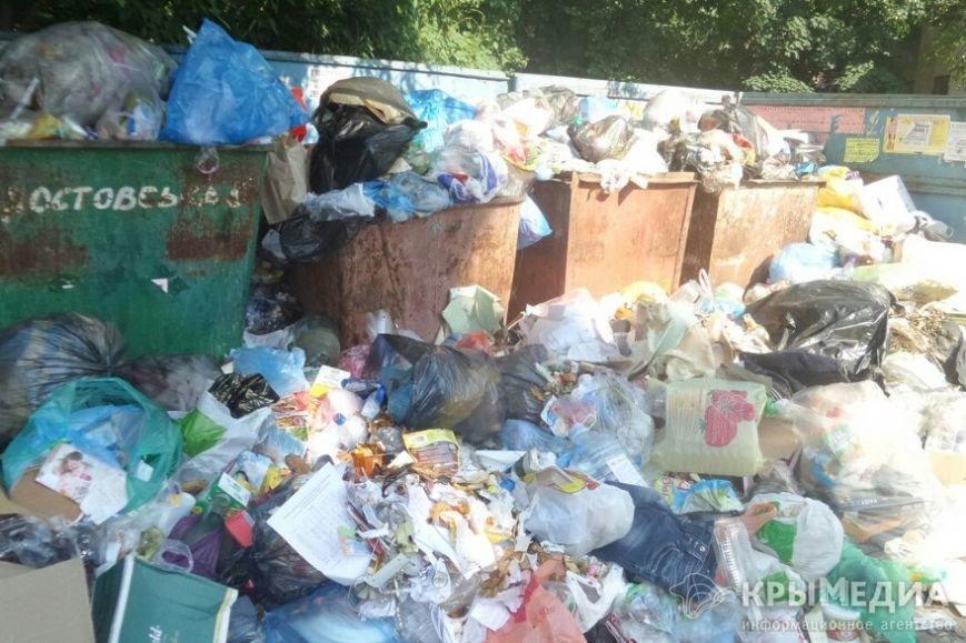На симферопольском Москольце пять дней не вывозят мусор (ФОТОФАКТ) (фото) - фото 3