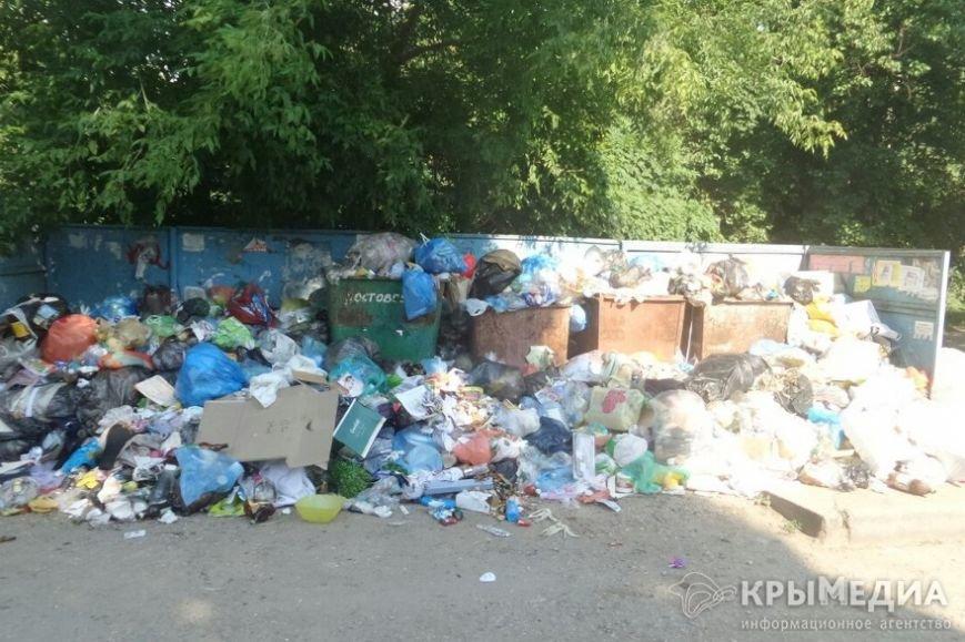 На симферопольском Москольце пять дней не вывозят мусор (ФОТОФАКТ) (фото) - фото 2
