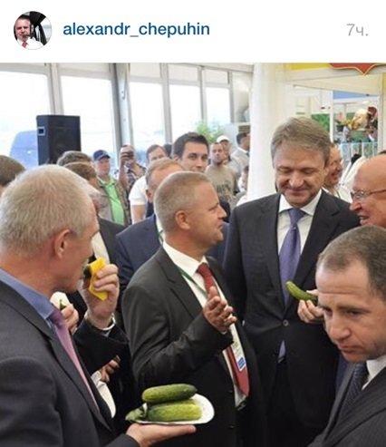 Ульяновские огурчики покорили федерального министра сельского хозяйства. Фото (фото) - фото 1