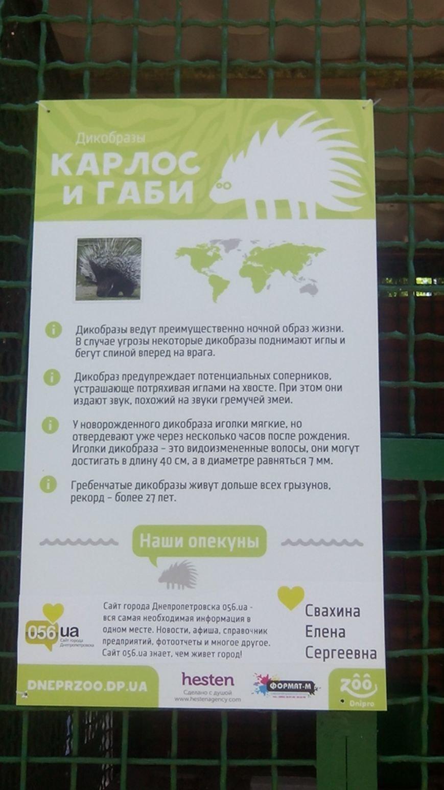 У днепропетровчан появилась возможность «усыновить» животных из городского зоопарка (ФОТО), фото-4