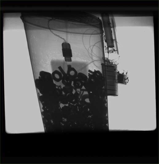 Мариупольцы предупредили взрыв самодельной бомбы (ФОТО) (фото) - фото 1