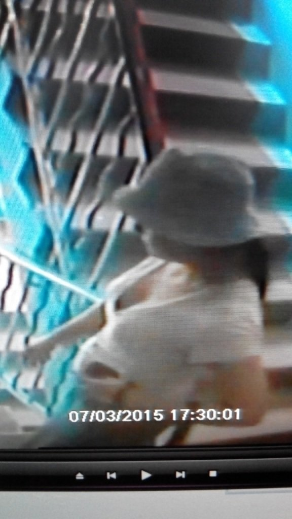 Милиция Днепродзержинска просит граждан помочь найти мошенницу (фото) - фото 4