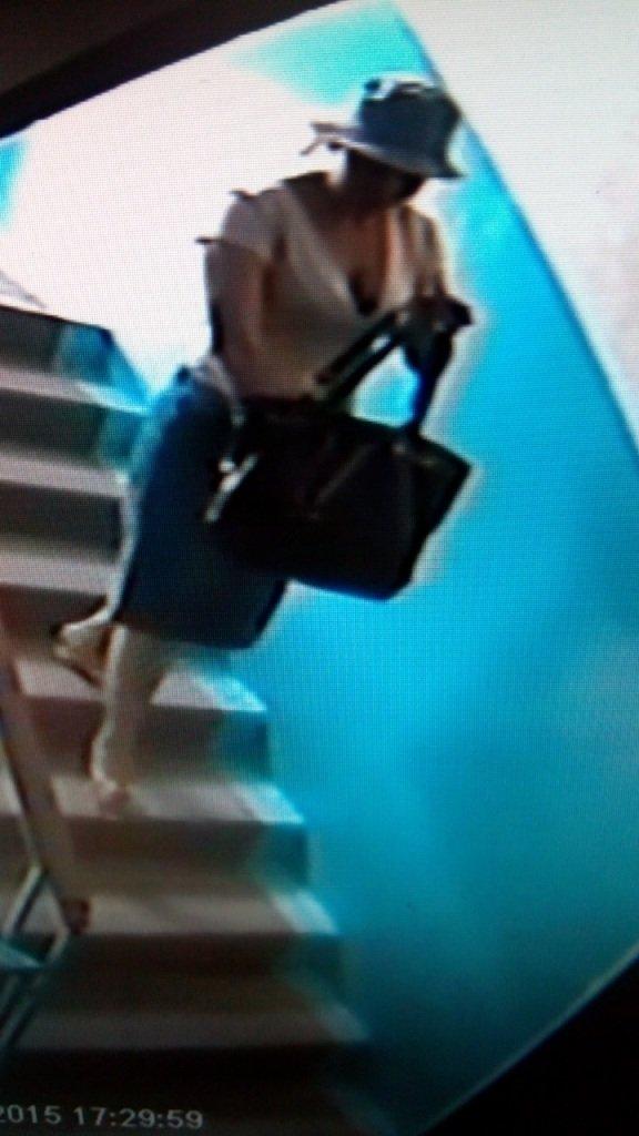 Милиция Днепродзержинска просит граждан помочь найти мошенницу (фото) - фото 2