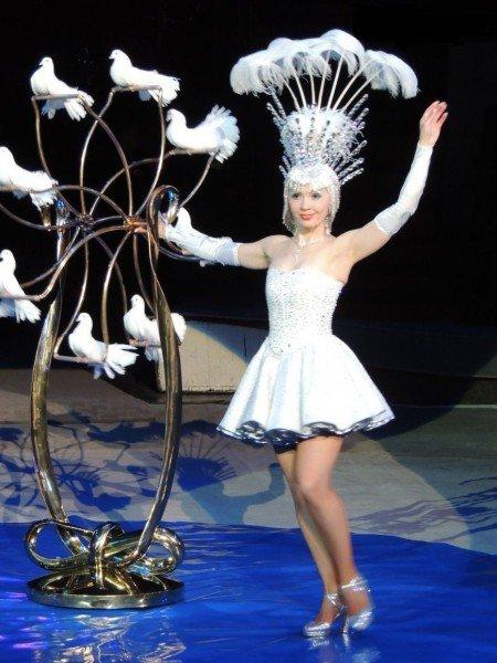 Впервые в Днепропетровске иллюзорно-лазерное цирковое шоу (фото) - фото 2
