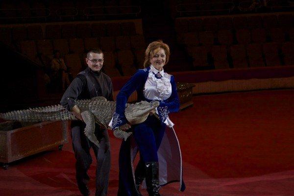Впервые в Днепропетровске иллюзорно-лазерное цирковое шоу (фото) - фото 4