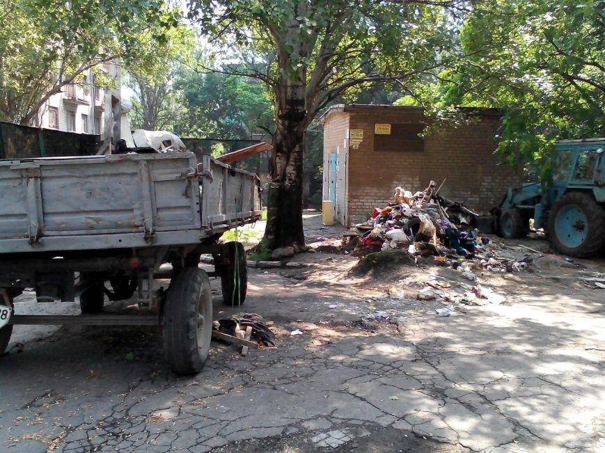 В центре Запорожья трактор, который убирал мусор, случайно выкорчевал дерево (ФОТО) (фото) - фото 1