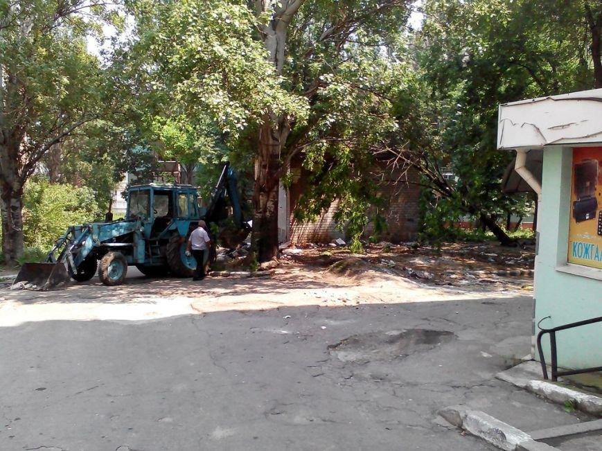 В центре Запорожья трактор, который убирал мусор, случайно выкорчевал дерево (ФОТО) (фото) - фото 5
