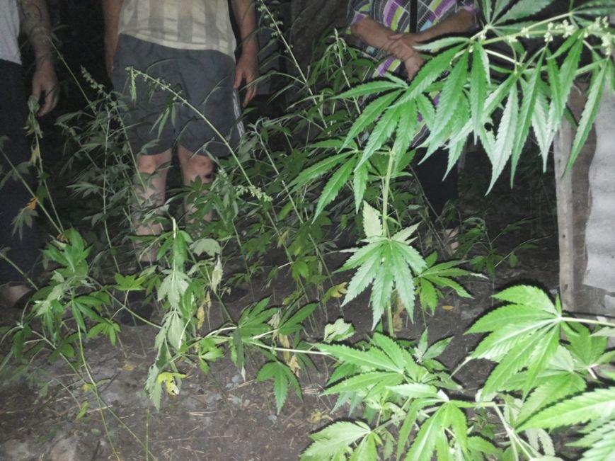 Наказания за марихуану в россии положительные действия марихуаны
