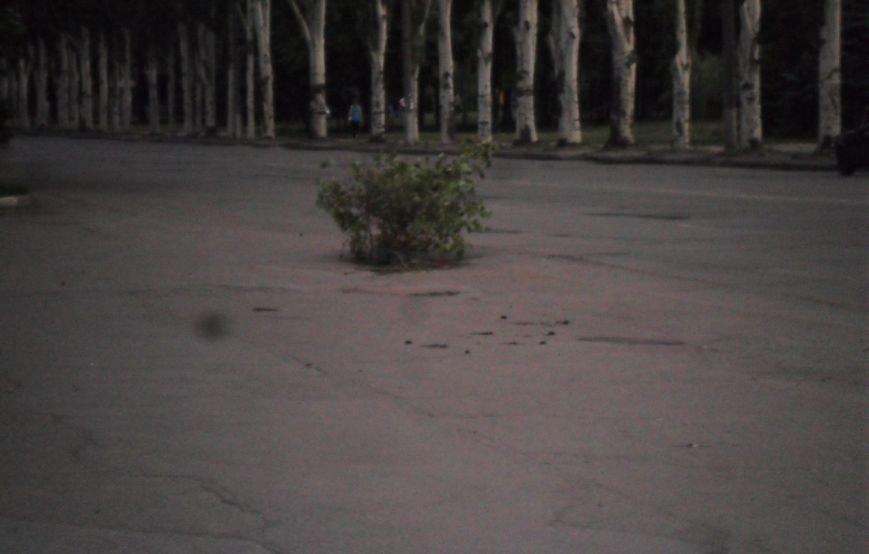В Кривом Роге коммунальщики выявили за неделю 54 открытых колодца и накрыли их (ФОТО), фото-4