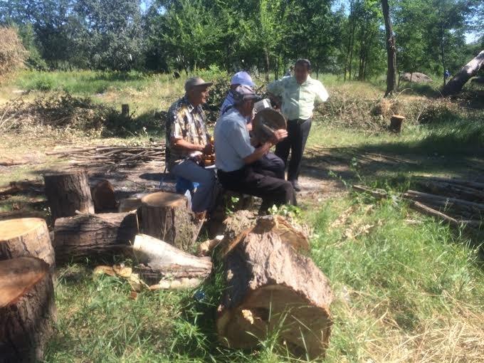 В Мариуполе  казаки  на месте будущего зоопарка провели субботник (ФОТО) (фото) - фото 1