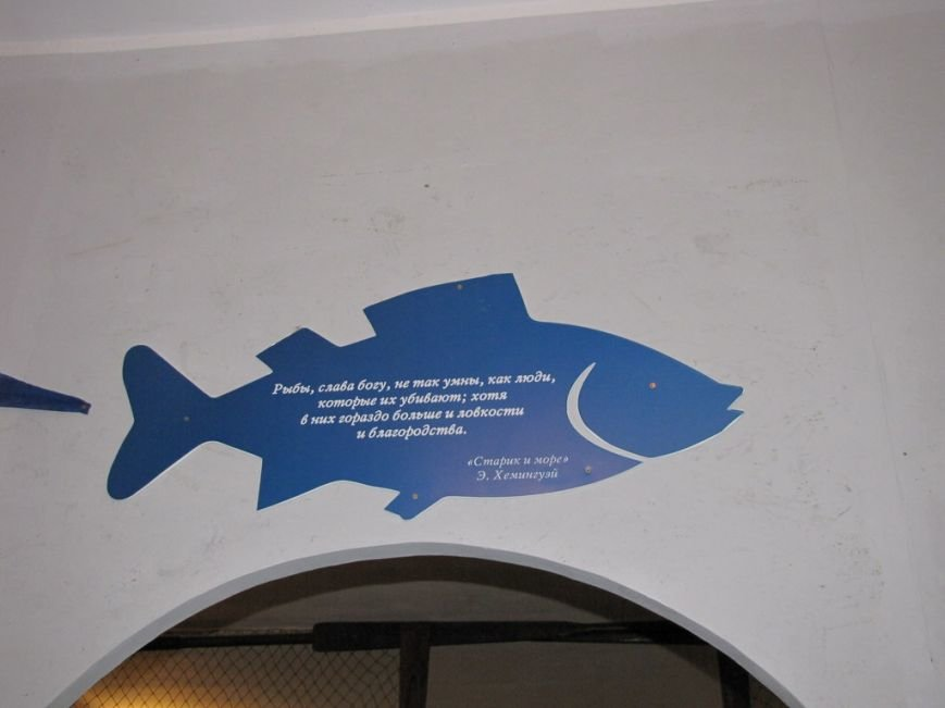 День рыбака в Феодосии (ФОТО и ВИДЕО), фото-10