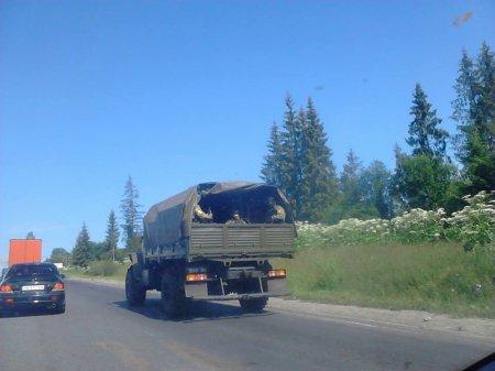 Очевидці зафіксували колону бронетехніки, що рухалася у напрямку Мукачева (ФОТО+ВІДЕО) (фото) - фото 5