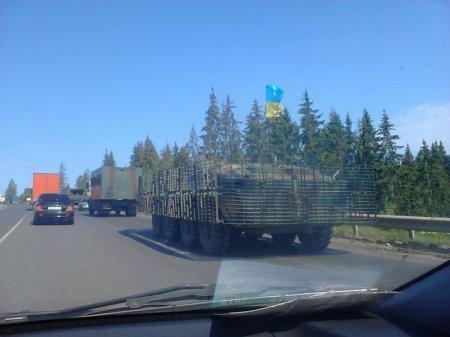 Очевидці зафіксували колону бронетехніки, що рухалася у напрямку Мукачева (ФОТО+ВІДЕО) (фото) - фото 7