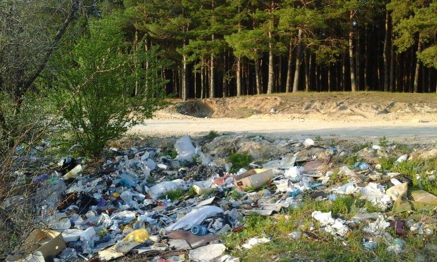 Мусорный пейзаж Николаева увидит весь мир (ФОТО) (фото) - фото 5