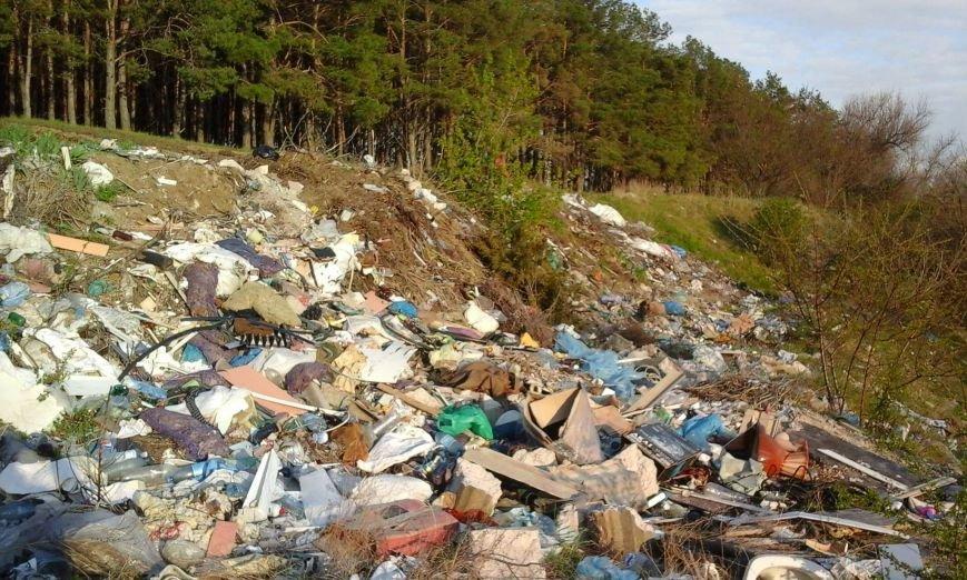 Мусорный пейзаж Николаева увидит весь мир (ФОТО) (фото) - фото 1