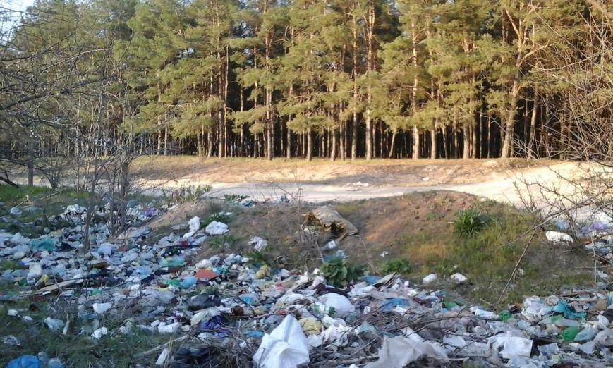 Мусорный пейзаж Николаева увидит весь мир (ФОТО) (фото) - фото 4
