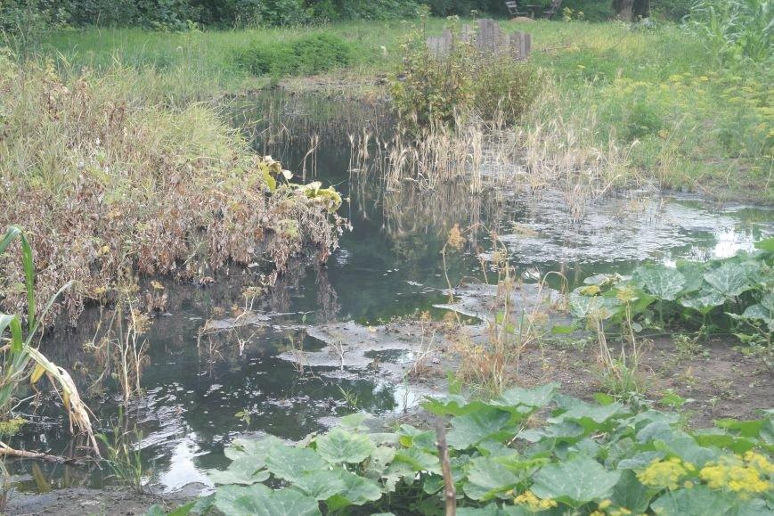 Изобилие зловонных «ароматов»: в Димитрове жители п. Новатор безрезультатно борются с канализацией, фото-3