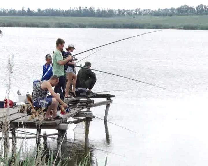 Сазан из предложенных рыбаками наживок выбрал « бутерброд» (фото) - фото 1