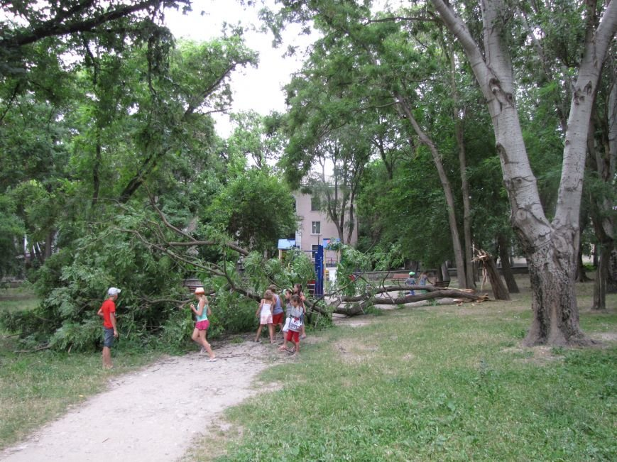 Феодосийские детишки чудом не пострадали! (Фото), фото-4