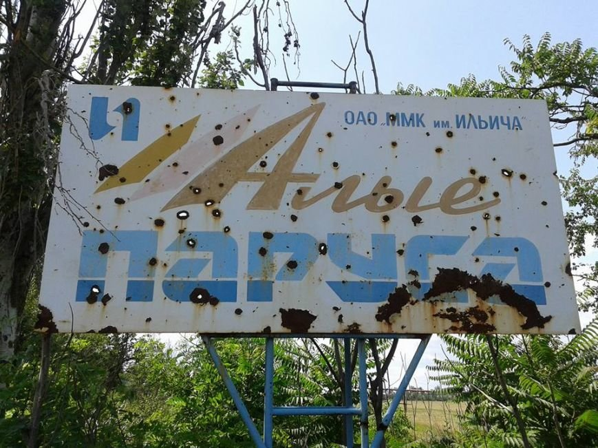 Жители Мариуполя поехали доказывать Киеву, что стратегические высоты оставлять опасно (ФОТО), фото-2