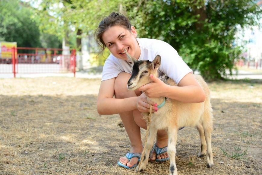 Волгоградец вернул в зоопарк козу-беглянку, фото-1
