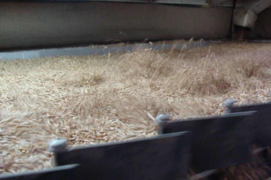 На Тернопіллі бучацькі аграрії приступили до реалізації високопродуктивного насіннєвого матеріалу (фото) - фото 1