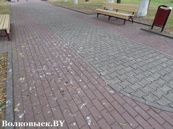 Чиновники пообещали к 1010-летию Волковыска построить аттракционы, но парк до сих пустует (фото) - фото 8