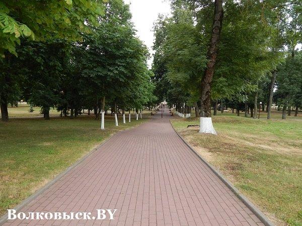 Чиновники пообещали к 1010-летию Волковыска построить аттракционы, но парк до сих пустует (фото) - фото 1