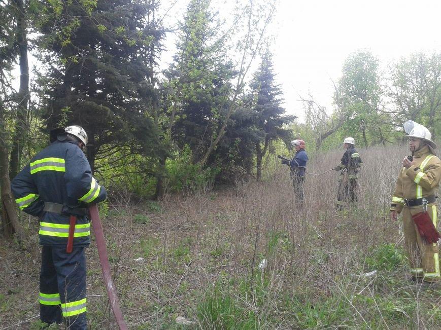 Краматорские спасатели учились тушить пожары в лесу и на поле (фото) - фото 1