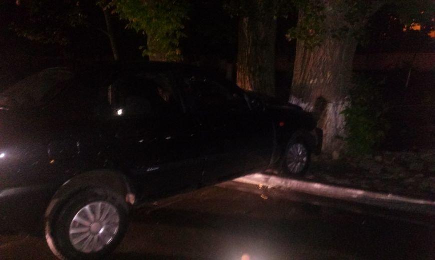 В Днепропетровске пьяный водитель врезался в дерево, фото-3