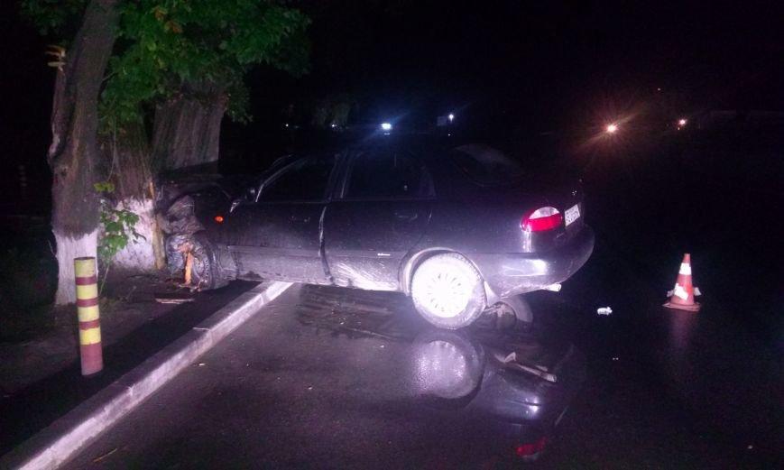 В Днепропетровске пьяный водитель врезался в дерево, фото-1