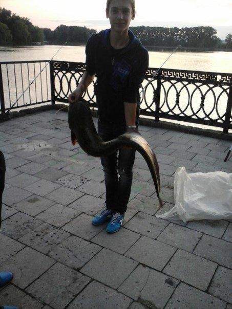 У Франківському озері впіймали 14-кілограмову рибку (ФОТО) (фото) - фото 1