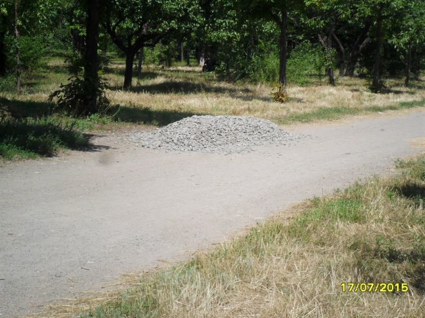 В Кривом Роге весь день косили траву, подметали и рыли траншеи (ФОТО), фото-12