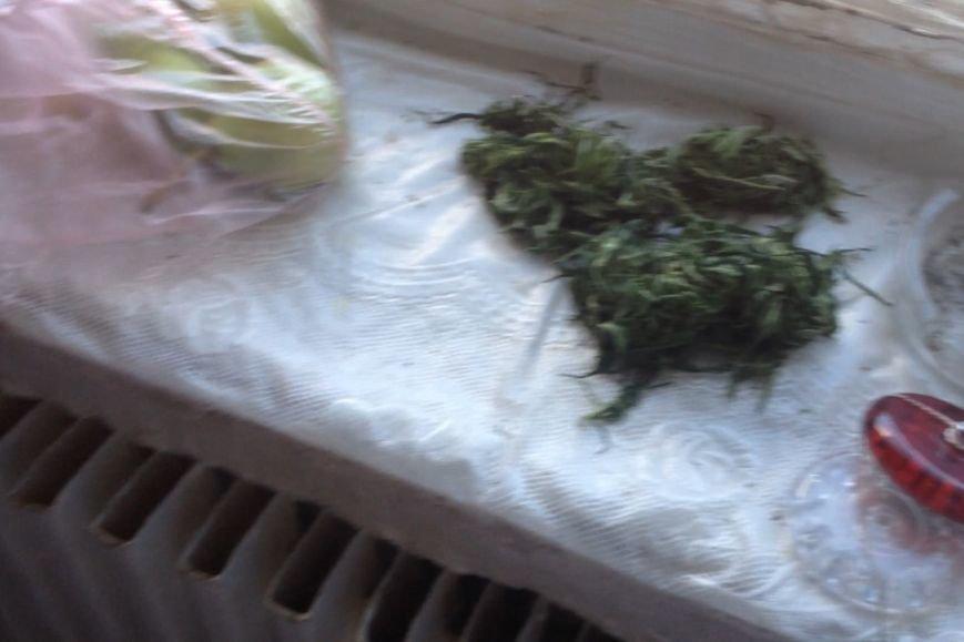 В Днепродзержинске продолжают изымать коноплю и марихуану (ФОТО) (фото) - фото 5