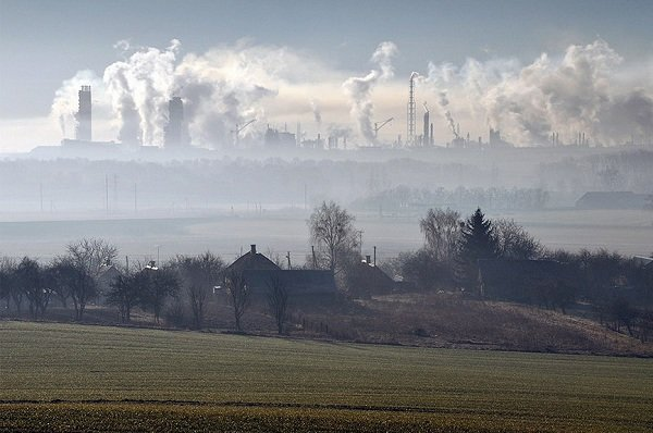 Фотография гродненки на тему экологии получила специальный приз посла Франции (фото) - фото 1
