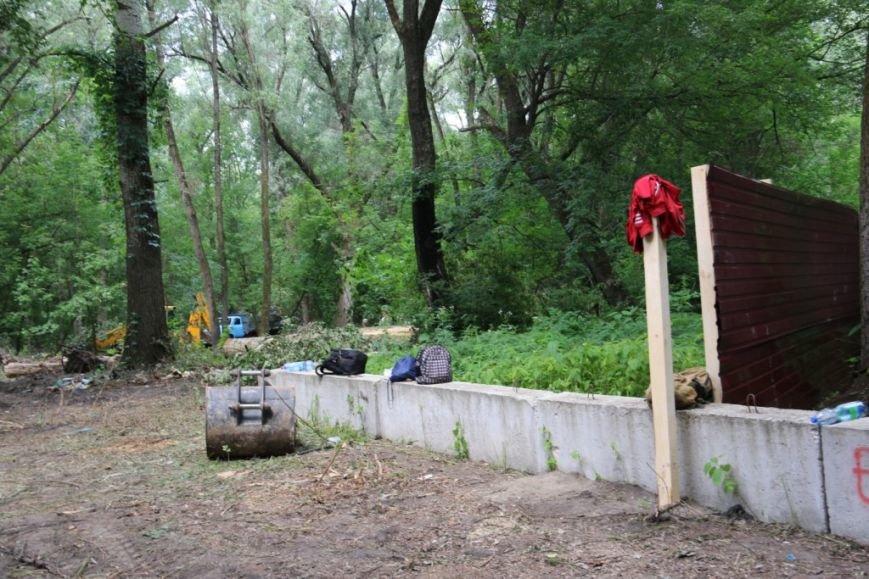 На Кордовке уничтожили 78 деревьев и поставили забор, фото-2
