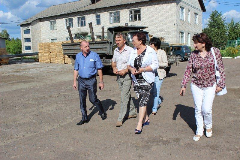 Очільниця обласної ради ознайомилася з роботою Конотопских лісгоспів, фото-2