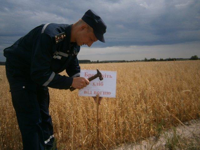 На Житомирщині рятувальники провели рейди на зернових полях (фото) - фото 1
