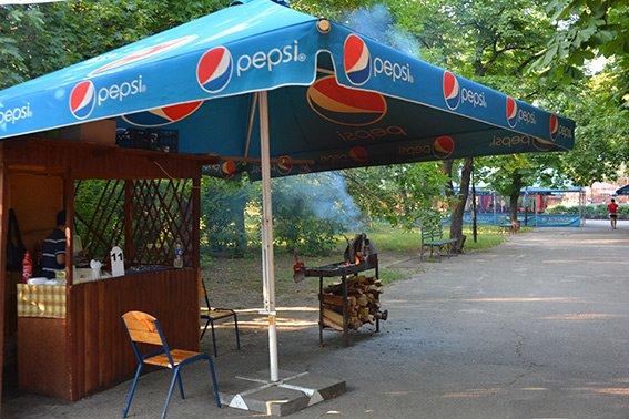 В николаевском парке провели рейд по выявлению нарушений правил торговли (ФОТО) (фото) - фото 3