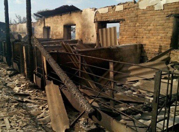 На Кіровоградщині внаслідок пожежі загинуло 111 свиней. ФОТО, фото-2