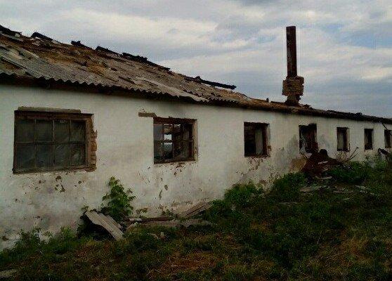 На Кіровоградщині внаслідок пожежі загинуло 111 свиней. ФОТО, фото-1