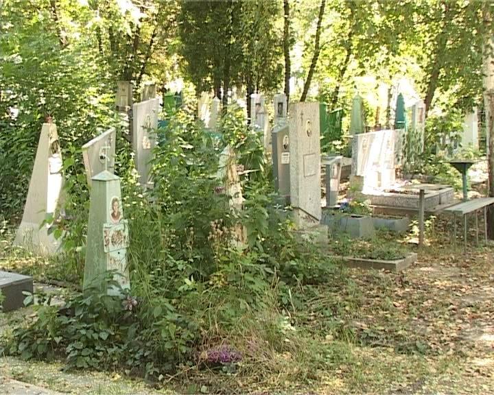 Армавицы должны навести порядок на кладбище (фото) - фото 1