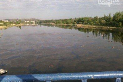 В Кривом Роге: в реке обнаружили расчлененный труп, на грузовик упало дерево, криворожанин предпочел умереть, а не заявлять на любимую, фото-2