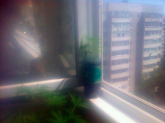 В центре Николаева «агроном» устроил нарколабораторию (ФОТО) (фото) - фото 1